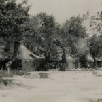 13- 06-1944 - Lucera - View of Camp - Foto di Albert Chance Special Collection, Gettysburg College