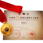 China Gold Medal